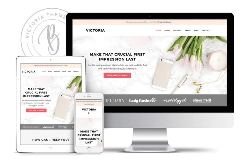 Victoria theme from bluchic themes, design elements for websites